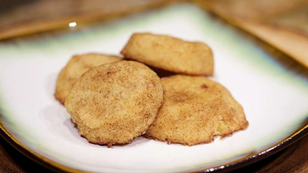 Keto Snickerdoodle Wide Closeup